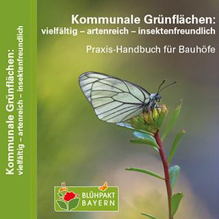 Titelbild des Praxis-Handbuchs / Schmetterling auf Blüte